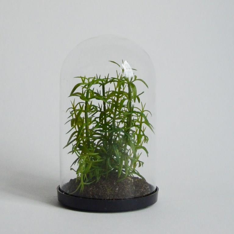 Суккулент искусственный в стекле16 см HLA430