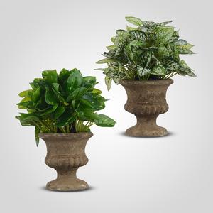 Искусственное Растение в Кашпо (набор из 2х шт)