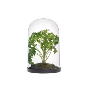 Суккулент искусственный в стекле 16 см HLA429